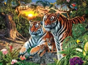 Eye Test: How Many Tigers Can You See In This Picture?